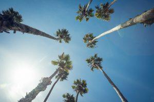 Santa Barbara skate Californie hollywood Death valley vallée de la mort Las Vegas Los Angeles San Francisco blog carnet de voyage route palmiers