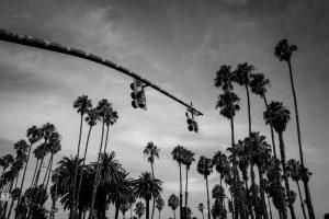 Santa Barbara palmiers Californie hollywood Death valley vallée de la mort Las Vegas Los Angeles San Francisco blog carnet de voyage route