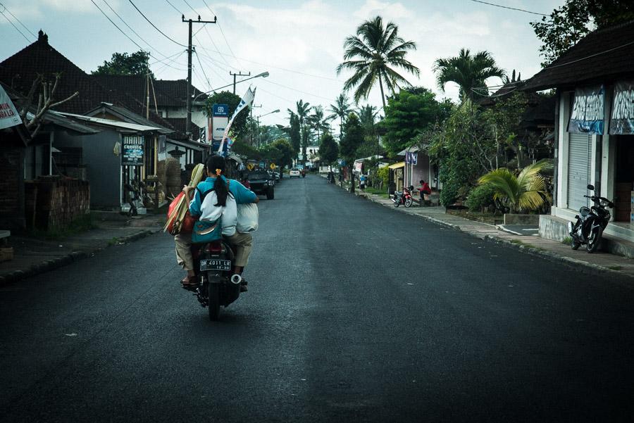 Bali, Amed, rice terrace, montagne, jungle, rizière, culture, Indonésie, Indonesia, Denpasar, Ubud, singe